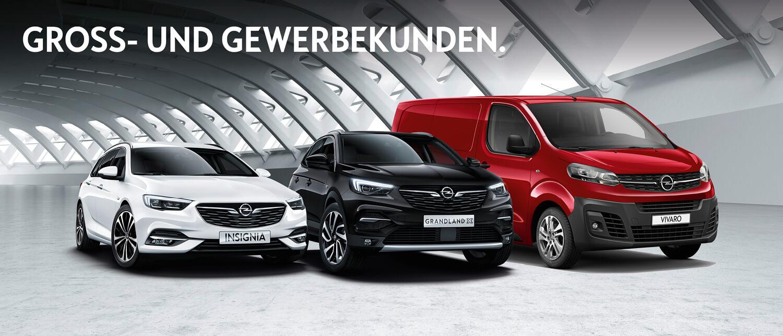 Opel-Geschaeftskunden-HWS.jpg