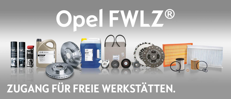Opel-FWLZ-Zugang-fuer-freie-Werkstaetten-HWS.jpg